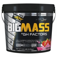 Big Joy Big Mass +GH Factors 3000 Gr